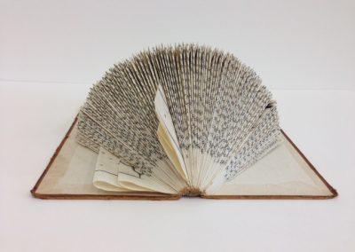 Folded Book2